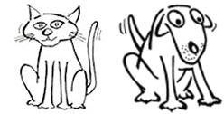katt hund veterinär märsta